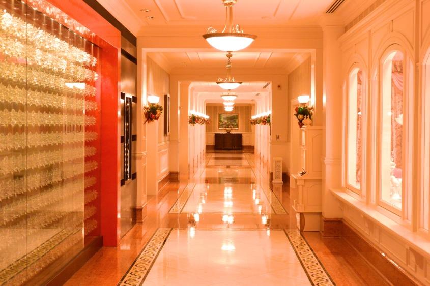 HKDL Hallway