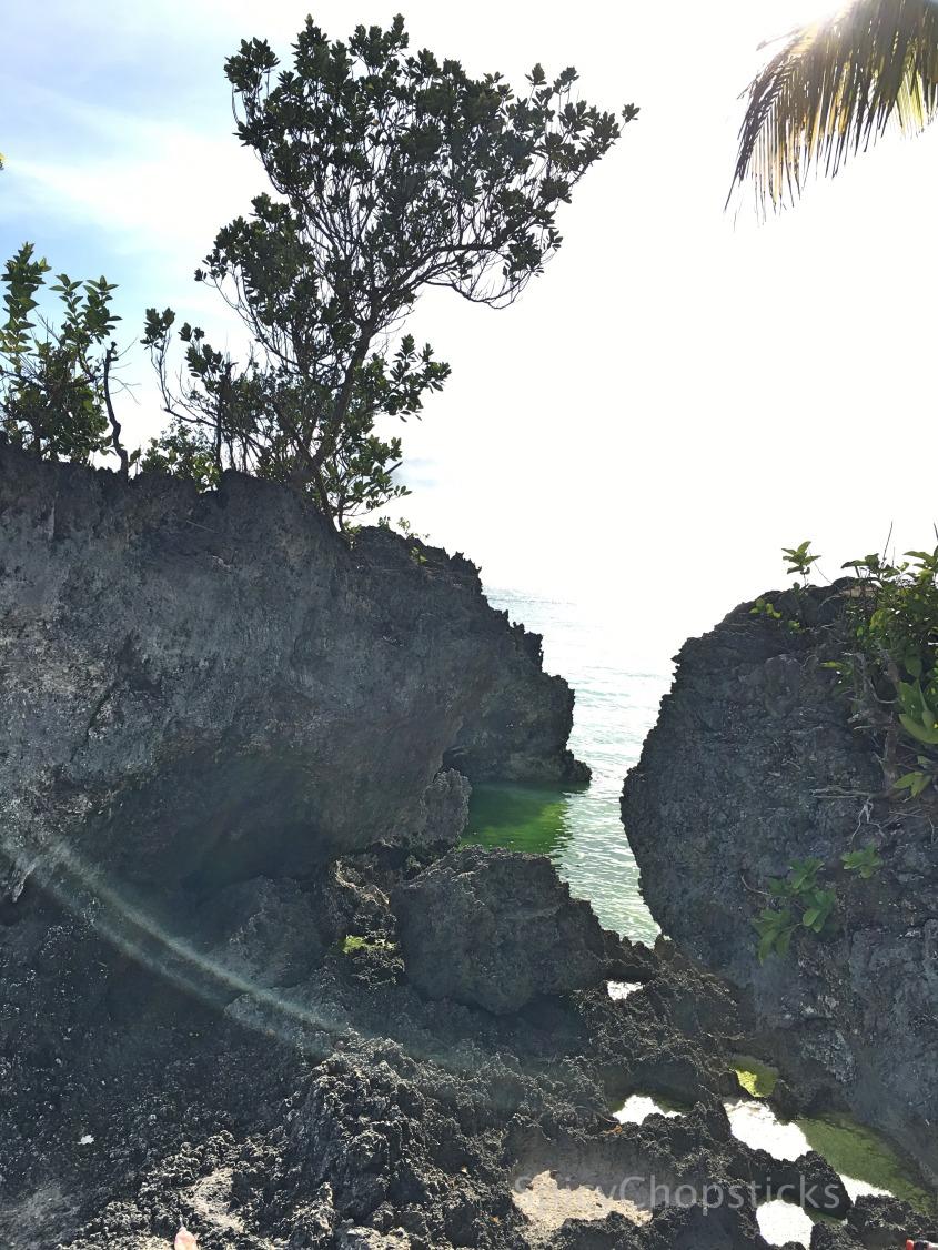 9 Island3SC.jpg